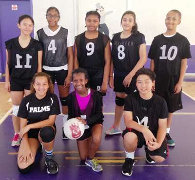 2015-03 Co-Ed volleyball team